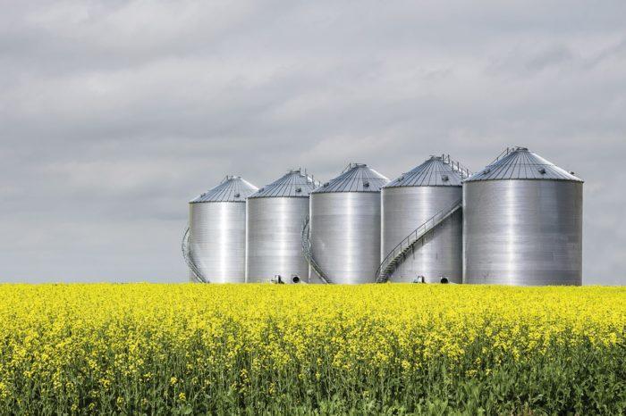 Grain Bin Safety Talk