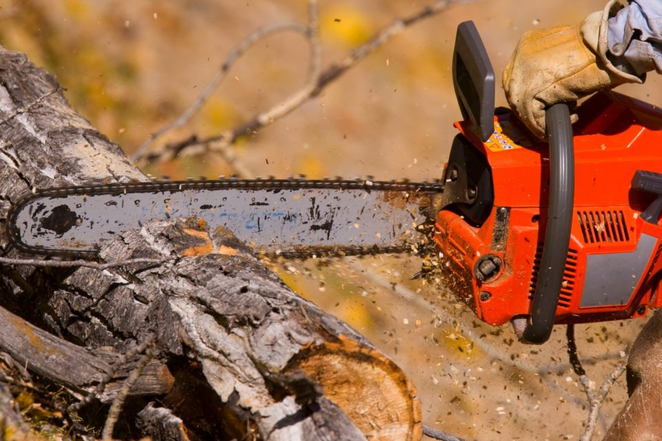 Chainsaw Safety Meeting Kit - Spanish